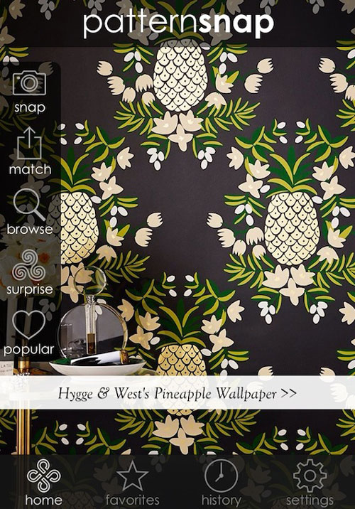 pattersnap: An app every interior designer needs