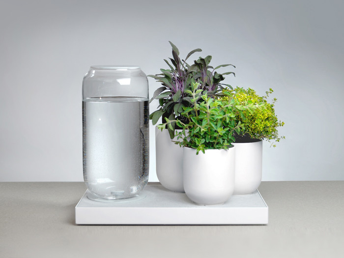 Tableau Automatic Watering Tray by Pikaplant Crowdfunding on Kickstarter